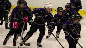 we are the winner whitestown mites hockey tour nt we are the winner whitestown mites hockey tour nt lysander mights won 2015 hd video