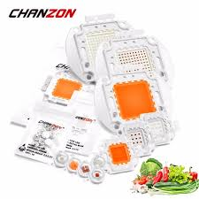 CHANZON TopBrand Store - Small Orders Online Store, Hot Selling ...