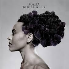 <b>Black Orchid</b> by <b>Malia</b> on TIDAL