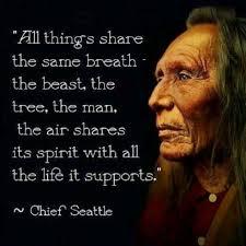 Chief Seattle Quotes Beast. QuotesGram