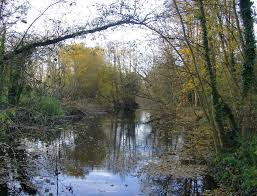 River Ash, Surrey