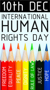 15 must see declaration of human rights pins human rights issues human rights day is celebrated annually across the world on 10 the date was