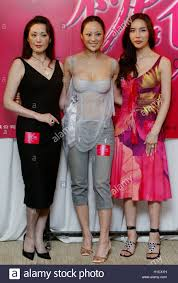 hong kong actress teresa cheung ese actress matsuzaka keiko reuters kin cheung actresses matsuzaka keiko teresa cheung and singer actress ha ri su pose at