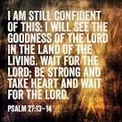 Psalm 27 13-14 Bible