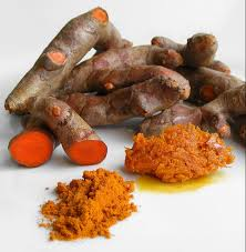 Image result for turmeric flower uses