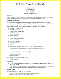 it business analyst resume sample pdf professional resume cover it business analyst resume sample pdf professional resume cover letter sample