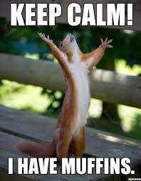 Troubled Squirrel - WeKnowMemes Generator via Relatably.com