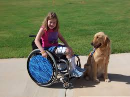 Image result for wheelchair pictures