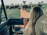 traveling: лучшие изображения (126) в 2020 г. | Кожа, Кожаные ...