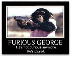 Curious George meme | Funny Dirty Adult Jokes, Memes & Pictures via Relatably.com