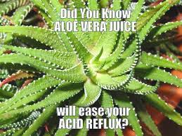 Natural Heartburn Relief and Home Remedies for Acid Reflux via Relatably.com
