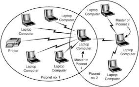 Image result for piconet