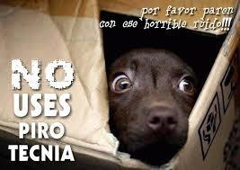 Resultado de imagen para imagenes animadas de perros asustados por petardos