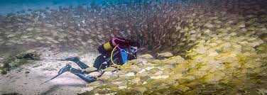 <b>Let's go</b> diving - the most relaxed way of diving in Gran Canaria