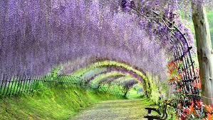 36 most <b>beautiful</b> places in <b>Japan</b> (photos) | CNN Travel