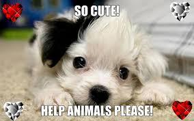 Βοηθήστε μας!