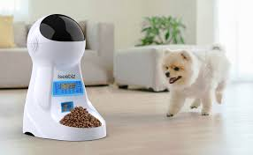 Iseebiz Automatic Cat Feeder 3L Pet Food Dispenser ... - Amazon.com