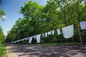 Afbeeldingsresultaat voor roma waslijn