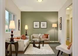 accent wall color walls living room