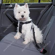 <b>Автомобильный ремень</b> безопасности для собак <b>Trixie</b>, 20-50 см ...