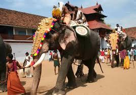 culture of kerala elephants in kerala culture edit