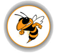 Image result for hooverville hornets