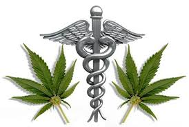 the marijuana papers   mpnforum magazinemedical marijuana is rapidly gaining statewide acceptance while becoming a blockbuster drug   annual  s near   billion  extensive research for this