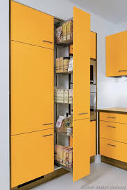 pantry ideas pull shelving kitchen pinterest  roll out pantry cabinet with hearthstone log cabin interior google se