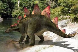 Afbeeldingsresultaat voor stegosaurus