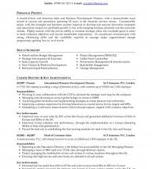 Offshore Resume Writers  professional cv usa cover letter template