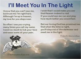 PET LOSS POEMS QUOTES DOGS image quotes at relatably.com via Relatably.com