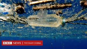 ЕС объявил войну пластмассе. Что ее заменит? - BBC News ...