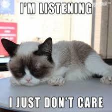 Grumpy cat on Pinterest | Grumpy Cat Meme, Meme and Grumpy Cat Humor via Relatably.com