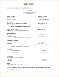 job resume examples for college students ledger paper sample resume for a first year college student stu dent student by job