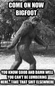Come on now BigFoot You know good and damn well you can't be ... via Relatably.com