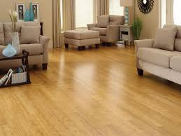 appeal bamboo flooring contemporary