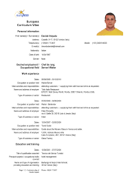 resume template word document cv in 81 interesting resume template microsoft resume templates word leisure resume template resume in word resume template