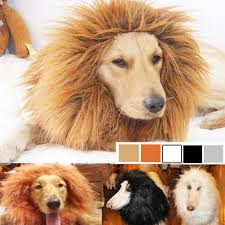 Cute Funny <b>Pet Cosplay Clothes</b> Transfiguration Costume Lion ...