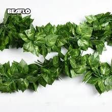 <b>frangipani</b> plant – Buy <b>frangipani</b> plant with free shipping on ...