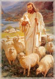Image result for good shepherd images