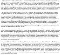 word essay example  word essay  word essay example my family essay in hindi