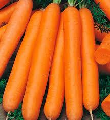 Дражированные <b>семена</b> - <b>Морковь Нанте</b> (300 шт.) l Русские ...