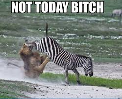 When an enemy gets a Quadra kill and tries to chase you down... via Relatably.com
