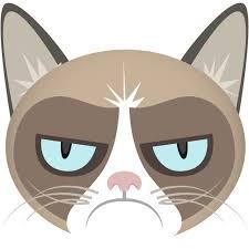 Amazon.com: Grumpy Cat Meme Generator: Appstore for Android via Relatably.com