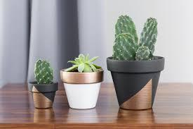 modernminipaintedplantpots