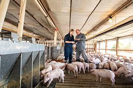 Animal Disease Prevention - <b>Pork</b> Checkoff