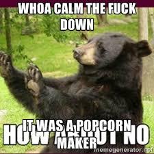 Whoa calm the fuck down It was a popcorn maker - How about no bear ... via Relatably.com