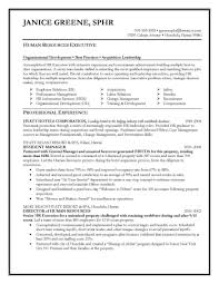 sample executive resume resume samples executive resume samples recruiter resume samples volumetrics co s executive resume sample word executive resume template word doc executive
