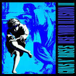 Use Your Illusion II album by Guns N' Roses