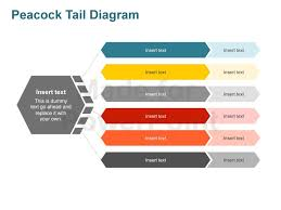 peacock tail diagram   powerpoint business slidesmore views  peacock tail diagram   powerpoint presentation